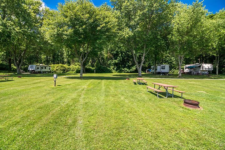 grassy camping spots